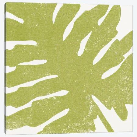 Tropical Treasures IV Canvas Print #MOH46} by Moira Hershey Canvas Art Print