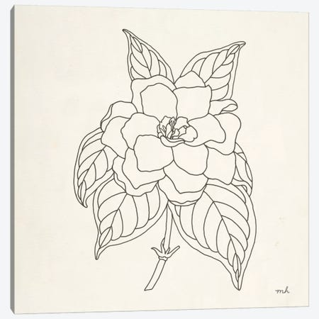 Gardenia Line Drawing Canvas Print #MOH8} by Moira Hershey Canvas Print