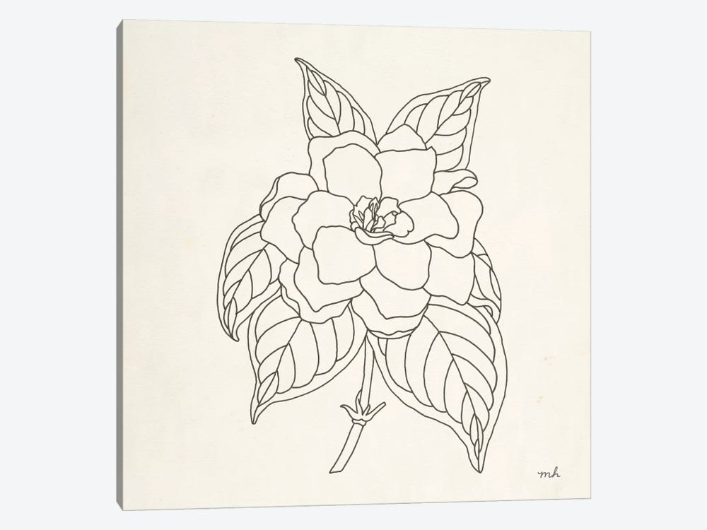 Gardenia Line Drawing by Moira Hershey 1-piece Canvas Art