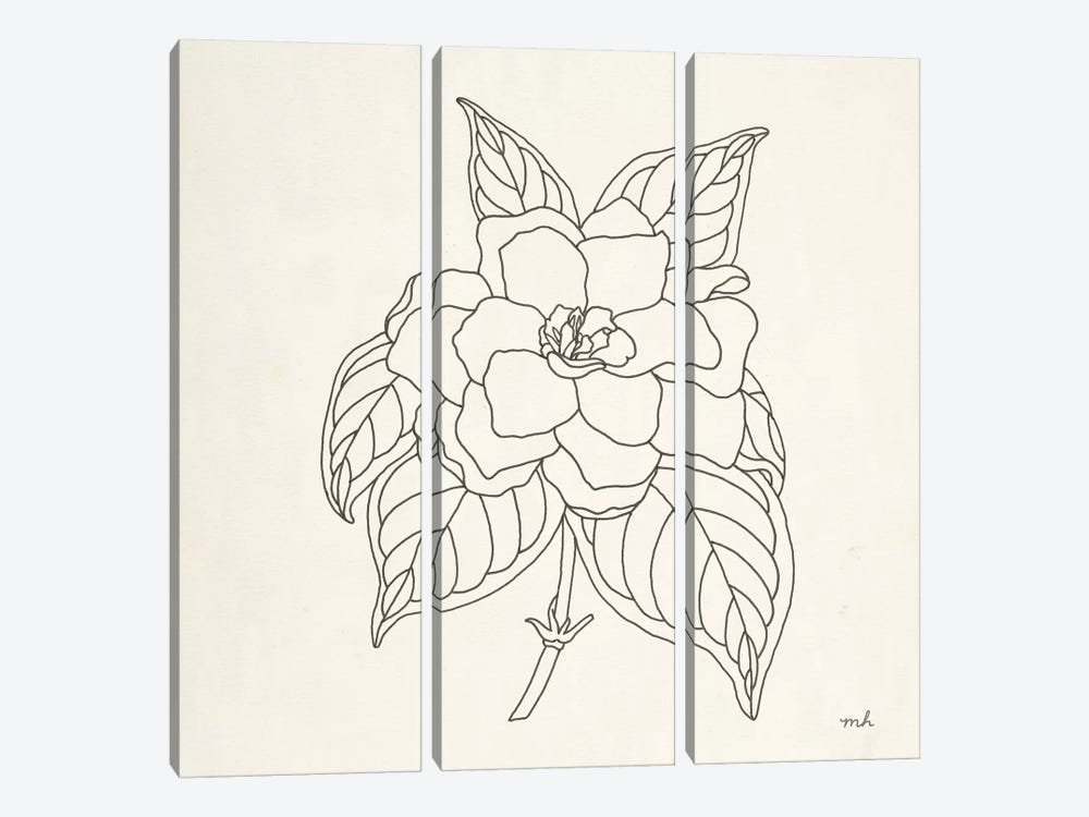 Gardenia Line Drawing by Moira Hershey 3-piece Canvas Art