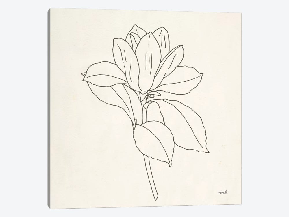 Magnolia Line Drawing II by Moira Hershey 1-piece Canvas Art Print