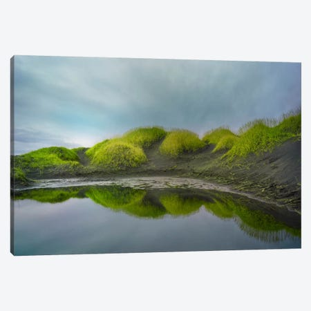 Reflejo Verde #2 Canvas Print #MOL107} by Moises Levy Canvas Wall Art