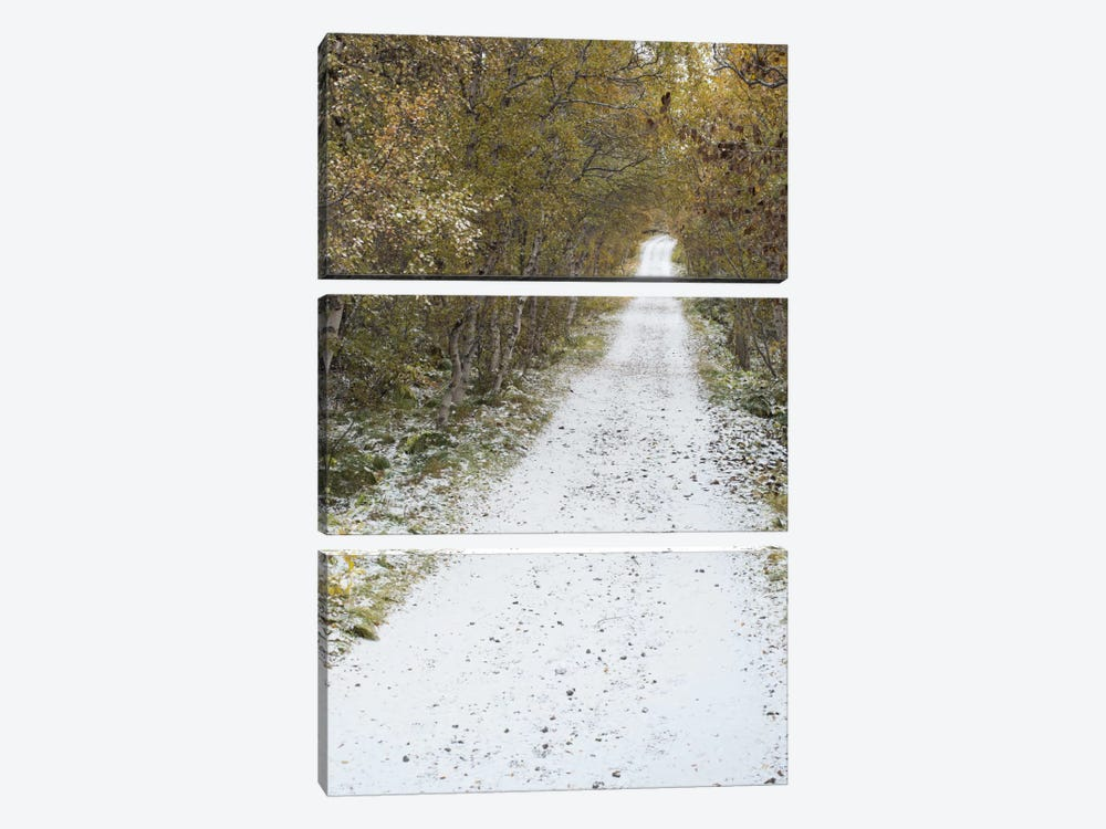 Snow Way #3 by Moises Levy 3-piece Canvas Art