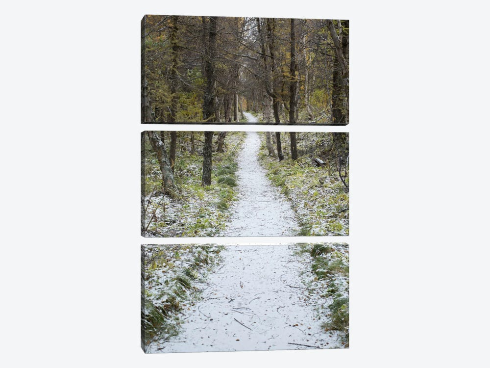 Snow Way #4 by Moises Levy 3-piece Canvas Print