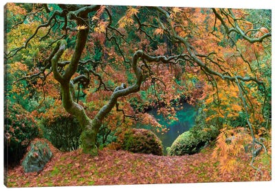 The Tree Final Canvas Print #MOL113