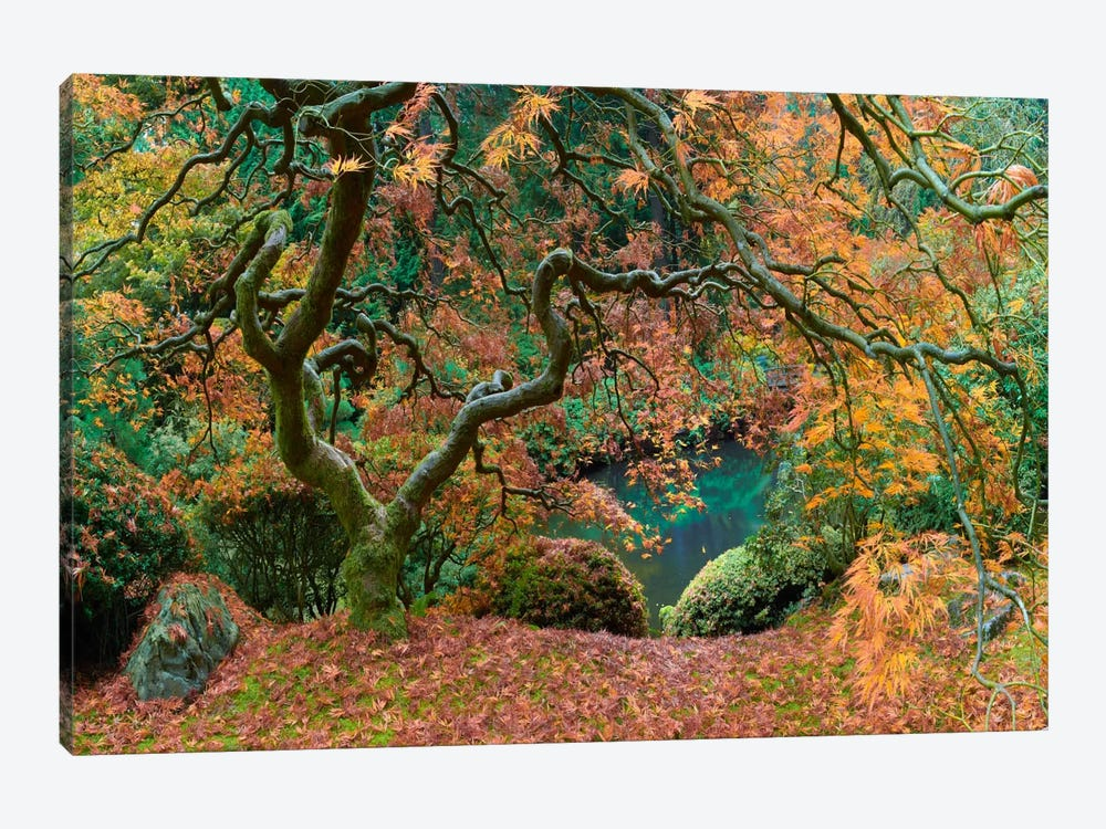 The Tree Final by Moises Levy 1-piece Canvas Art