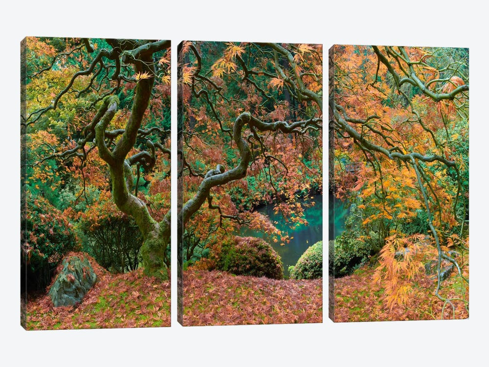 The Tree Final by Moises Levy 3-piece Canvas Artwork