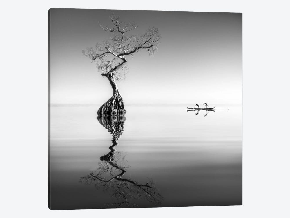 Armonia by Moises Levy 1-piece Canvas Wall Art