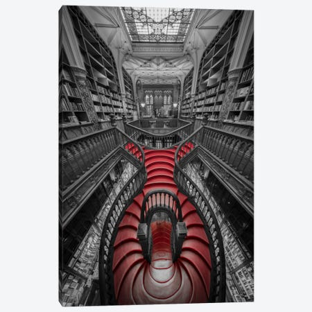 Lello I Canvas Print #MOL175} by Moises Levy Canvas Art Print