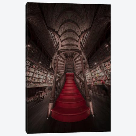 Lello II Canvas Print #MOL176} by Moises Levy Canvas Print