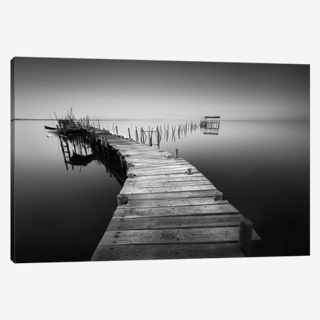 My Way V Canvas Print #MOL178} by Moises Levy Canvas Wall Art