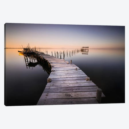 My Way V, Color Canvas Print #MOL179} by Moises Levy Canvas Wall Art