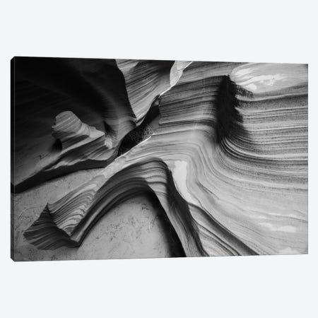 Snake Canyon Canvas Print #MOL17} by Moises Levy Canvas Art
