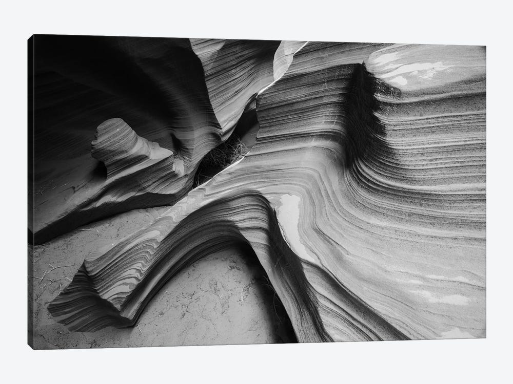 Snake Canyon by Moises Levy 1-piece Canvas Art