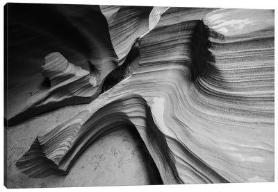 Snake Canyon Canvas Art Print