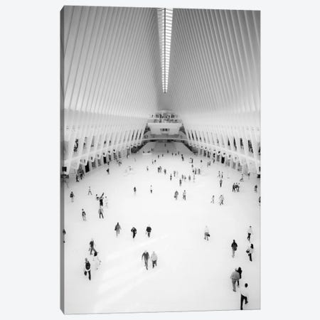 Oculus Canvas Print #MOL181} by Moises Levy Canvas Print