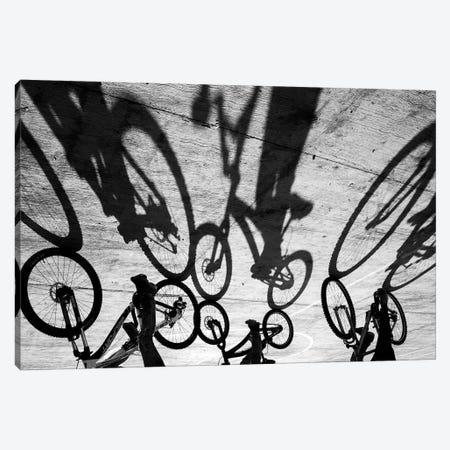 Tropical Shadows XXVI Canvas Print #MOL219} by Moises Levy Art Print