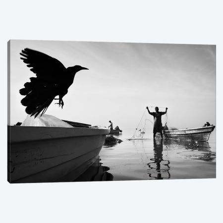 Tropical Shadows XLV Canvas Print #MOL234} by Moises Levy Canvas Art
