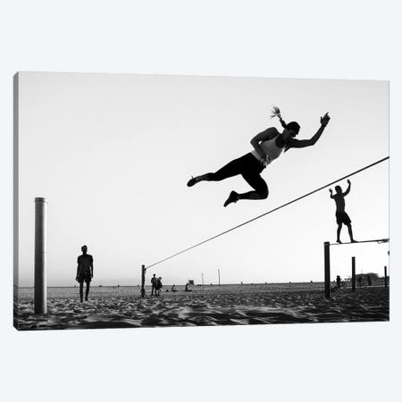 California Silhouttes LVI Canvas Print #MOL260} by Moises Levy Canvas Art