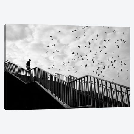 City Silhouettes VII Canvas Print #MOL282} by Moises Levy Canvas Wall Art