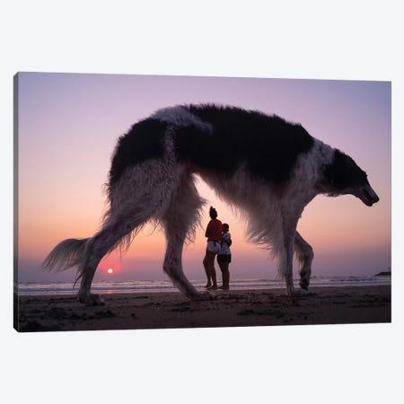 Dog City XVII Canvas Print #MOL338} by Moises Levy Canvas Wall Art