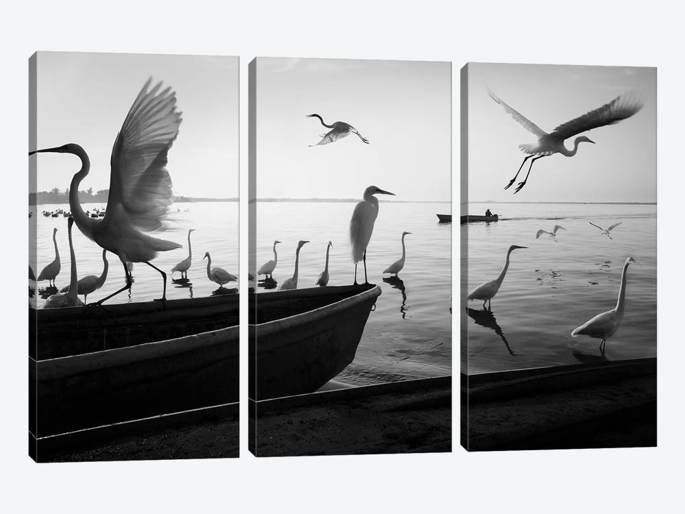 Fishermen Waters II by Moises Levy 3-piece Canvas Art