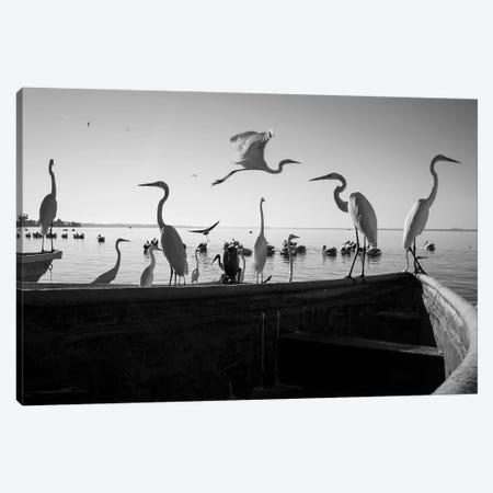 Fishermen Waters VII Canvas Print #MOL348} by Moises Levy Canvas Art Print