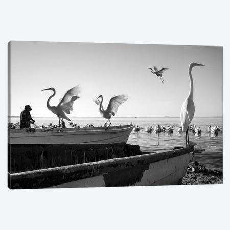 Fishermen Waters VIII 3-Piece Canvas #MOL349} by Moises Levy Canvas Print