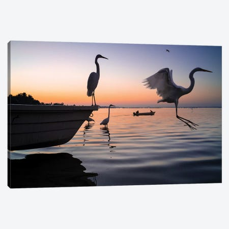 Fishermen Waters XI 3-Piece Canvas #MOL352} by Moises Levy Canvas Artwork