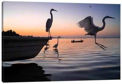 Fishermen Waters XI Canvas Art Print