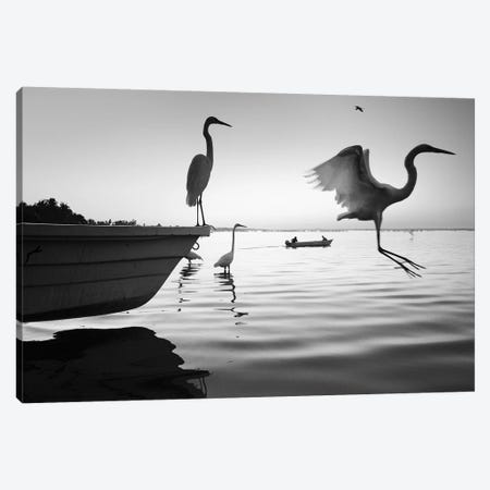 Fishermen Waters XII Canvas Print #MOL353} by Moises Levy Canvas Artwork