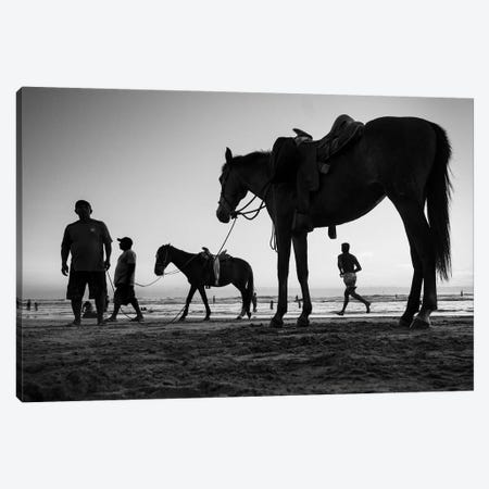 Horse Scales II 3-Piece Canvas #MOL363} by Moises Levy Art Print