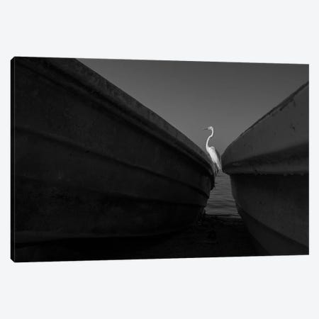 Fishermen XII Canvas Print #MOL377} by Moises Levy Art Print