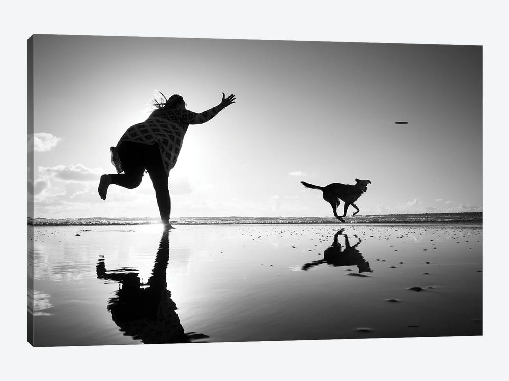 Flying Dog I by Moises Levy 1-piece Canvas Wall Art