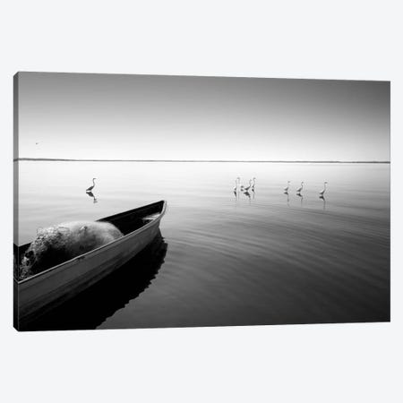 Boat And Herons Canvas Print #MOL51} by Moises Levy Art Print