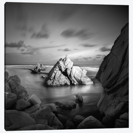 Destiny #2 Canvas Print #MOL62} by Moises Levy Canvas Art