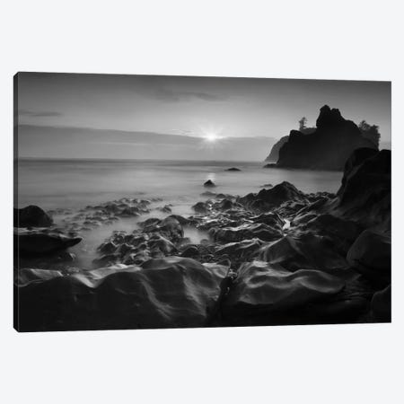 Sunset At Ruby Beach Canvas Print #MOL63} by Moises Levy Canvas Art