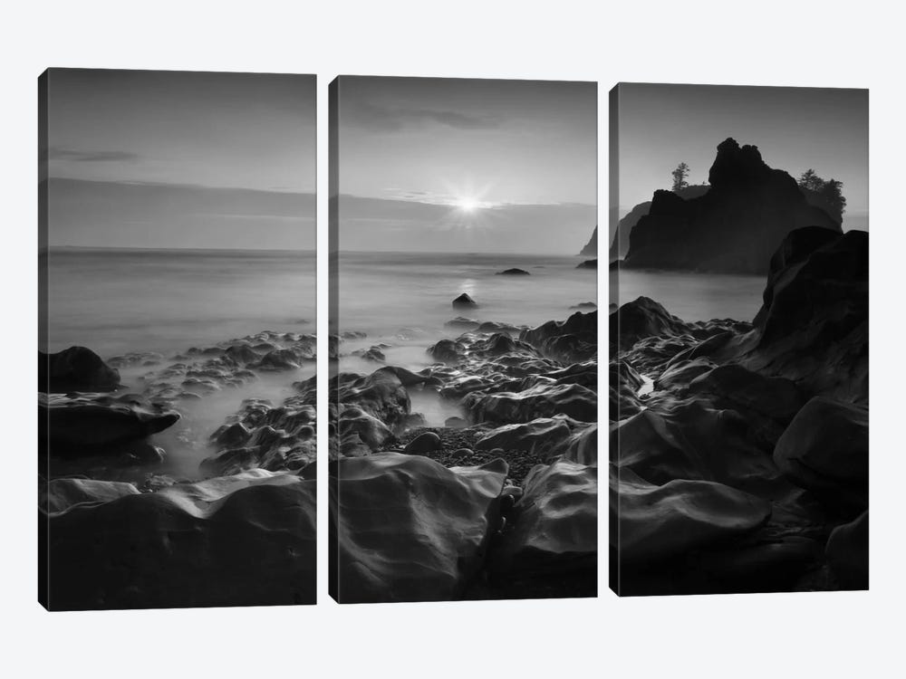 Sunset At Ruby Beach by Moises Levy 3-piece Art Print