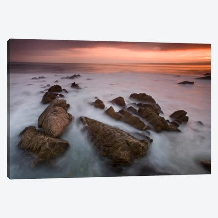 Monterey #97 Canvas Print #MOL67} by Moises Levy Art Print