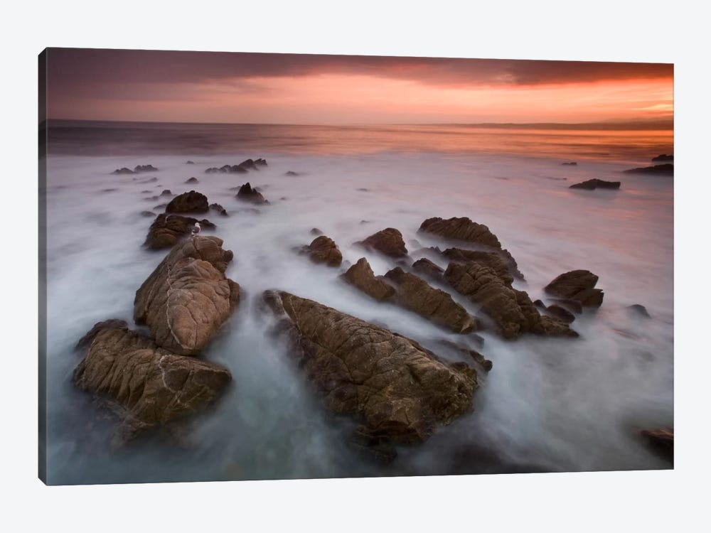 Monterey #97 by Moises Levy 1-piece Art Print