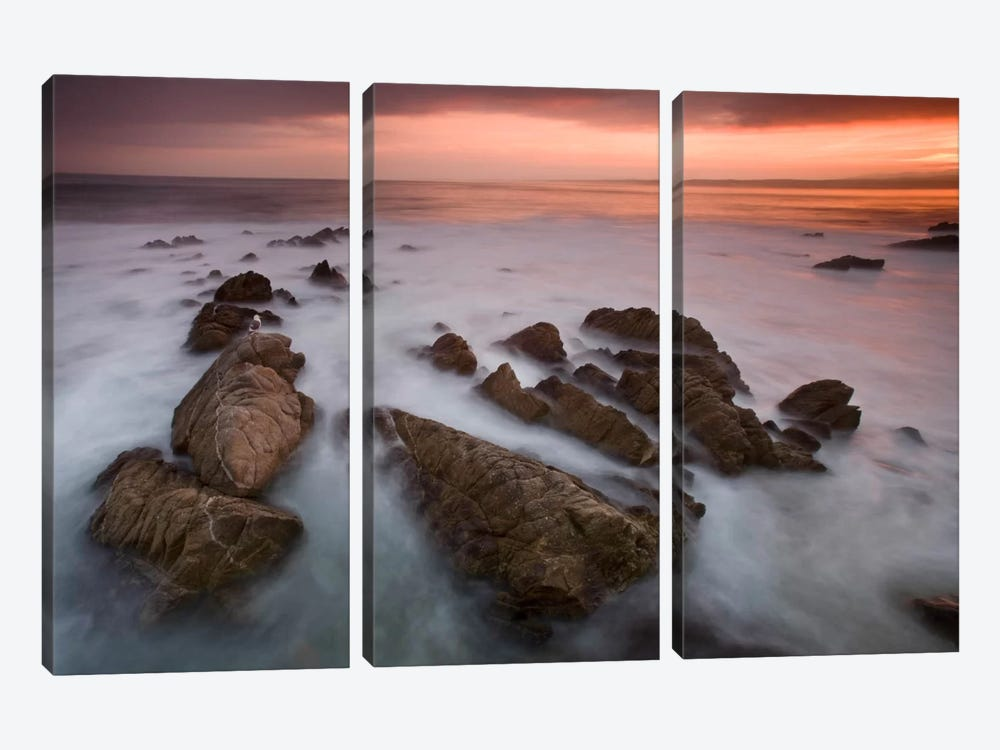 Monterey #97 by Moises Levy 3-piece Canvas Art Print
