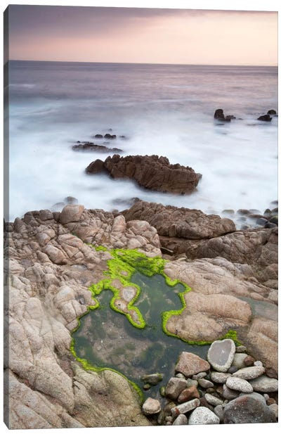Monterey #122 Canvas Art Print