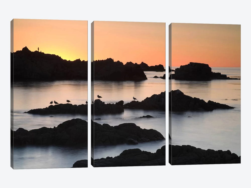 Monterey #67 by Moises Levy 3-piece Canvas Print