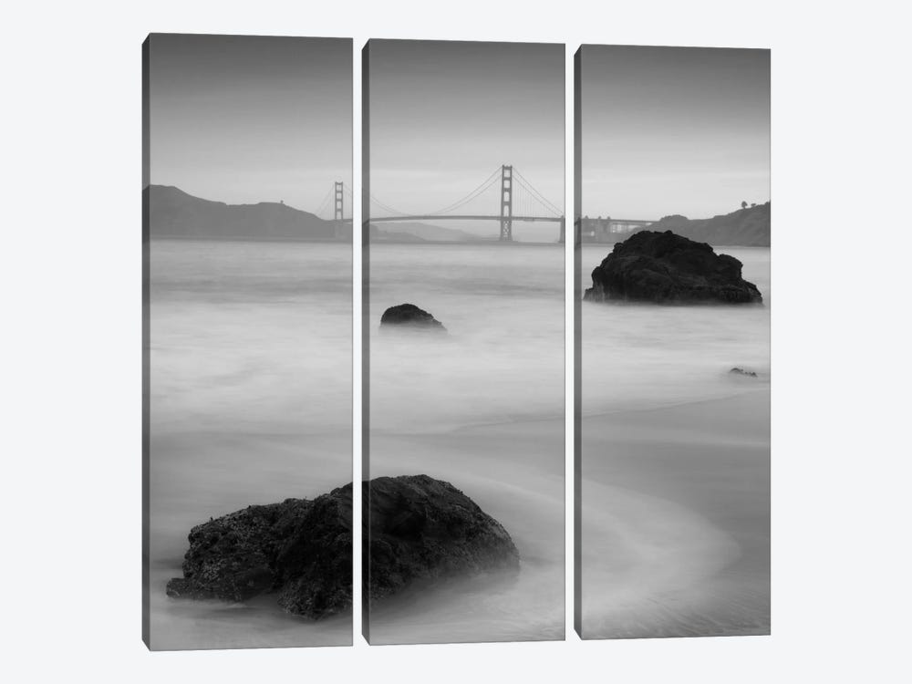 Rocks And Gg #2 by Moises Levy 3-piece Canvas Print