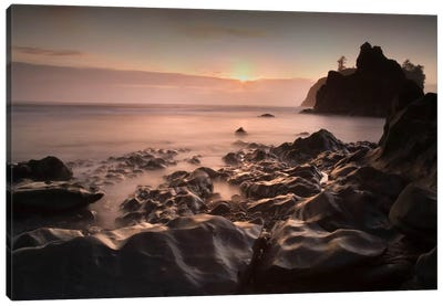 Ruby Beach 1-21 Color Canvas Art Print