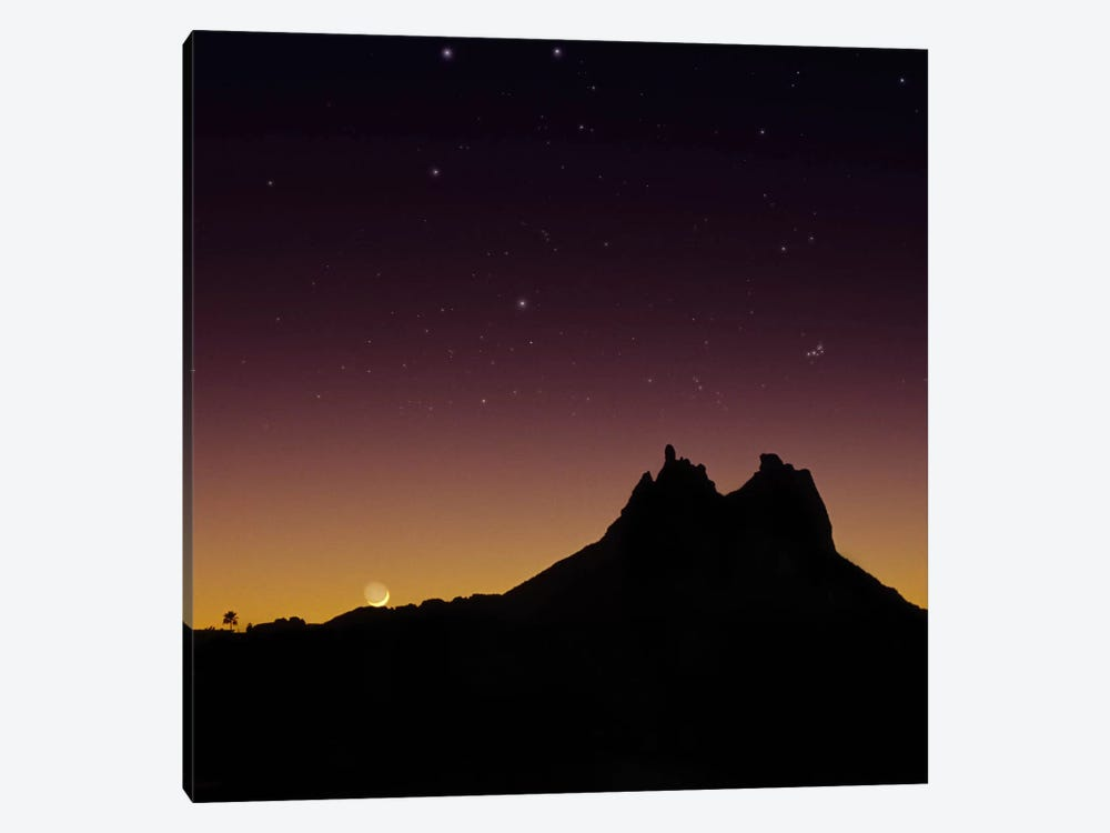 Sonora #2 by Moises Levy 1-piece Canvas Print