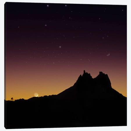 Sonora #2 Canvas Print #MOL78} by Moises Levy Canvas Print
