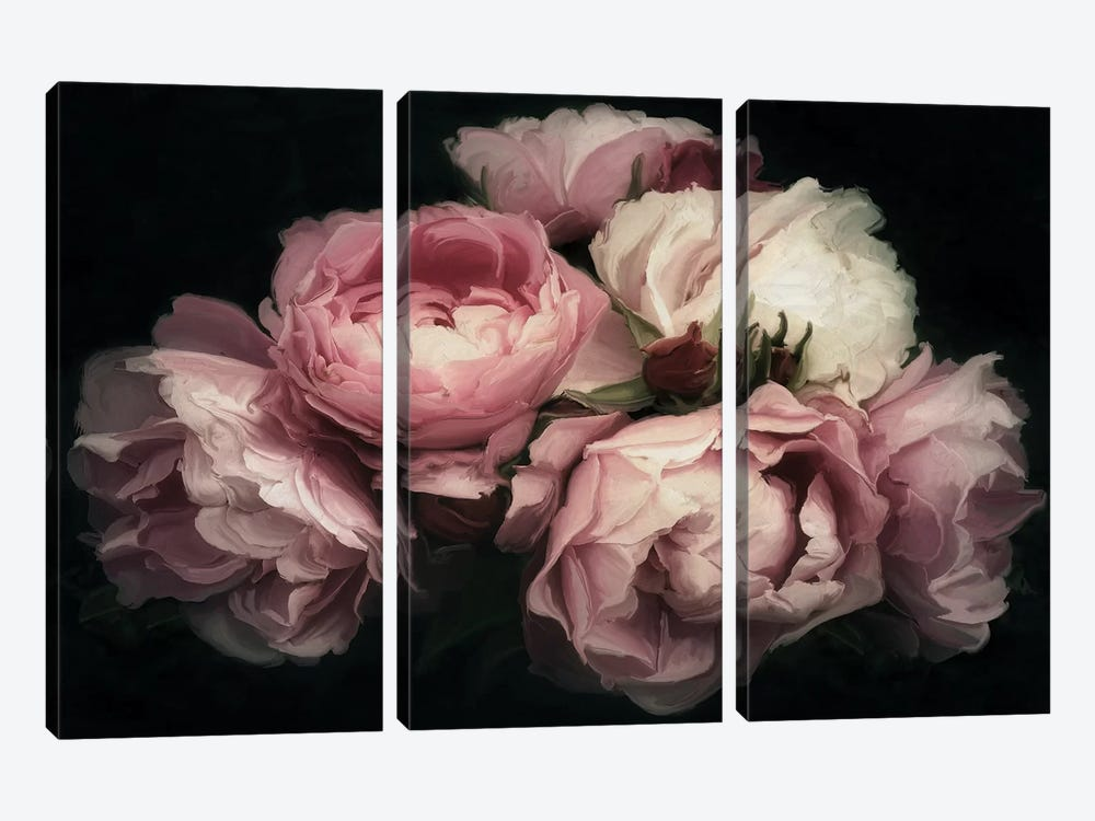 Vintage Posy by 5by5collective 3-piece Canvas Artwork