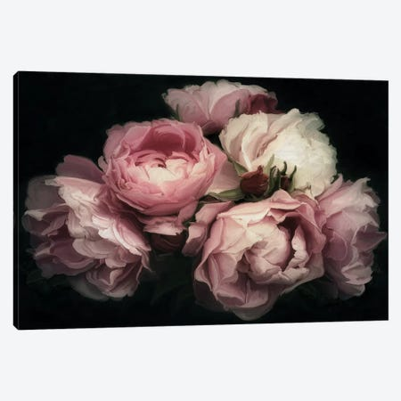 Vintage Posy 3-Piece Canvas #MOO11} by 5by5collective Canvas Art
