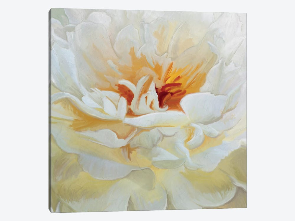 Alabaster Petals by 5by5collective 1-piece Canvas Art